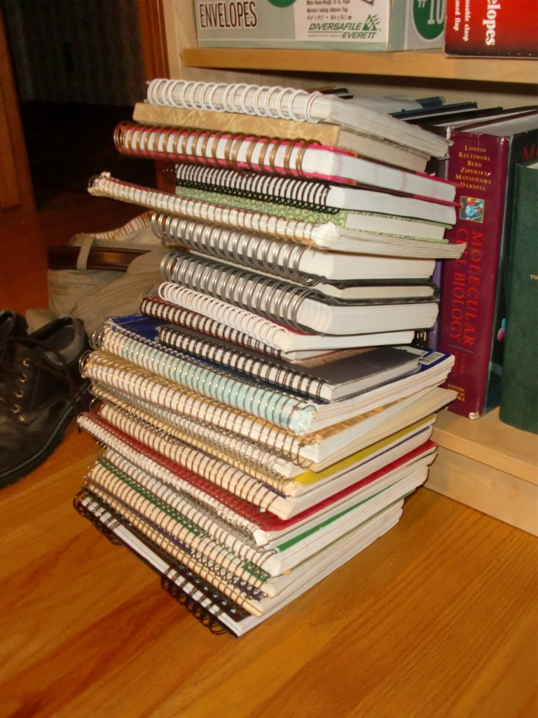 Evidence: A pile of completed notebooks. (Not pictured: everything on my hard-drive, nearly 1,000 blog posts (and 100's more on my other blogs, past and present), and dozens of other notebooks.)