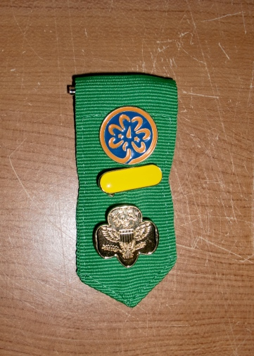 I am now officially a Girl Scout Leader. I hope the giddiness lasts through the first few meetings.