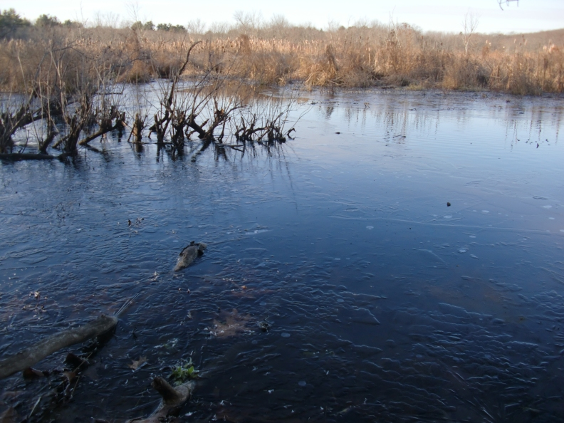 In the upper middle, you can see the edge of the ice where the river flows.